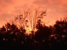 Pretty sunrises...